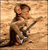 Maybe Lex can give this little fellow some guitar lessons.  Macey, ask him.OK?
