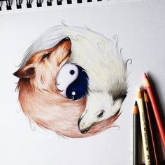 Yin-Yang Wolf By _ Also check out our new art featuring page Yin Yang Tattoos, Ying Und Yang Tattoo, Fox Tattoo, Wolf Tattoos, Colorful Drawings, Cool Drawings, Yin Yang Wolf, Arte Yin Yang, Fox Art