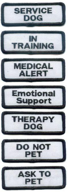 Emotional Support Dog Training Houston