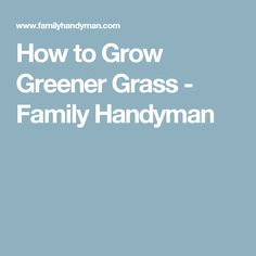 How to Grow Greener Grass - Family Handyman