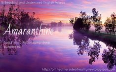 16 Beautiful and Underused English Words | On the Other Side of Reality
