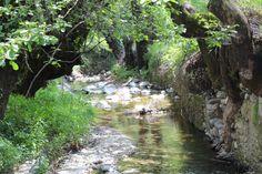Φύση- Κοιλάνι-Λεμεσός