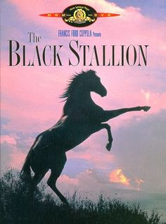 The Black Stallion, the first horse movie I ever watched, also my favorite book series