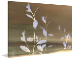 Large canvas artwork with natural leaves and small plants. Tranquility VI - Marmont Hill