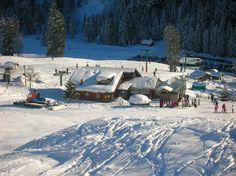 Cabane du Petit Oiseau, Rathvel Snow, Outdoor, Cabin, Eat, Landscape, Outdoors, Outdoor Games, Outdoor Living, Bud