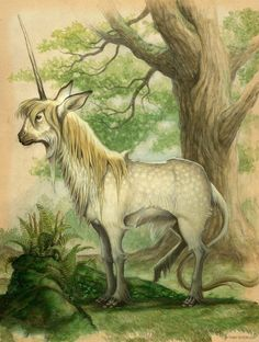 Arthur Spiderwick's Field Guide to the Fantastical World Around You – Tony DiTerlizzi Fantasy Creatures, Mythical Creatures, Goblin, Spiderwick, Fairy Drawings, Bristol Board, Unicorn Art, Field Guide, Faeries