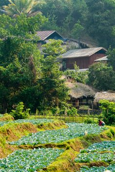 """""""Small village south of Mae Hong Son"""" / photo by Fonfon on Panoramio"""