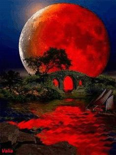 A Blood Moon. Blood on the Moon Stars Night, Stars And Moon, Ciel Nocturne, Shoot The Moon, Beautiful Moon, Amazing Nature, Amazing Red, Awesome, Belle Photo
