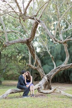 Matheson Hammock Park Engagement Session Miami Photo By Traci Burke Photography