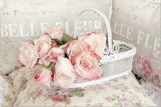 Roses rose roses