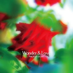 Wonder… engagement flower