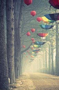 Oliver Hirtenfelder - 'Umbrellas in Nami, Korea' Travel Spot Photos