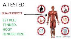 Ha a szervezeted elsavasodik, az számos problémát okozhat. Másrészt, a testnedveink , a vér, nyál, vizelet, és így tovább lúgosak. Annak érdekében, hogy megőrizzük az egészségünket meg kell tartani…