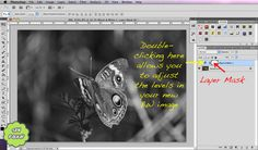 Photoshop Tutorial: Black and White Tutorial and Backing Up Edited Work