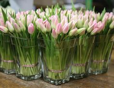 A hive of activity at McQ HQ. Here are some adorable tulips 🌷 🌷🌷 #mcqueens #flowers #london