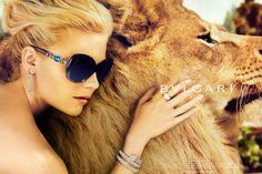 Lion Bulgari and Dunst