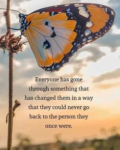Uplifting Quotes, Positive Quotes, Motivational Quotes, Inspirational Quotes, Quotes To Live By, Love Quotes, Spiritual Awakening Quotes, Mom Quotes From Daughter, Butterfly Quotes