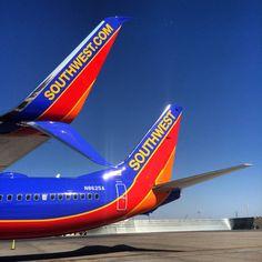 737-800 fork winglets