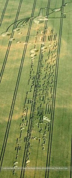 Crop Circle - Part 2 - finished off next day with hieroglyphics by christine