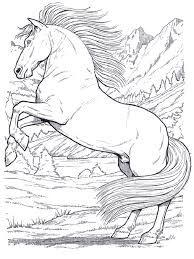 fotos de desenhos de pessoas montadas em cavalos - Pesquisa Google