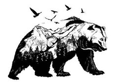 60960516-hand-drawn-bear-for-your-design-wildlife-concept.jpg (450×321)