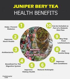 Health benefits of juniper berry tea include; There are stomach pains, bloating, heartburn, and anorexia problems. It can be used to eliminate infections in the urinary tract. It may also help treat diabetes by helping to lower blood sugar. Juniper berry tea can be applied directly to the skin or consumed by drinking, depending on the situation. #health #benefits #of #juniper #berry #tea Juniper Berry, Lower Blood Sugar, Anorexia, Heartburn, Herbal Tea, Teas, Health Benefits, Diabetes, Herbalism