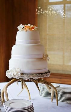 antler wedding cake topper | Rustic Wedding Idea: Deer Antler Decor