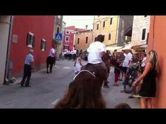 Brtonigla-lazy donkey racing