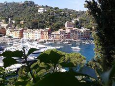 Portofino Liguria Mare