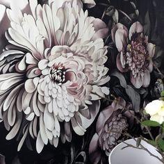 Dark Floral II Black Desaturated Wallpaper XXL (300%) - by Ellie Cashman Design