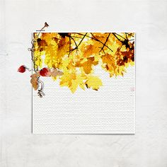 aAspnesDesigns : Autumn  Credits : http://ozone.oscraps.com/gallery/showphoto.php?photo=294829&title=autumn-1&cat=1351