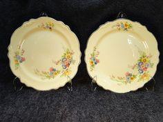 Homer Laughlin Virginia Rose Dinner Plate Bouquet 9 1/4 in - Crazing TWO #HomerLaughlin