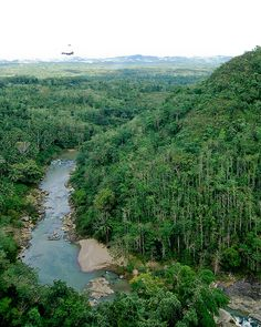 Zipline in Bohol, Philippines.  Saw this from the river but didn't get to do it.  Next time!