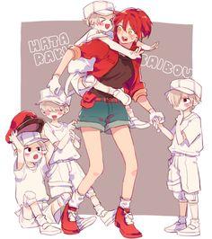 Hataraku Saibou (Cells at Work! Manga Anime, Anime Art, Dark Fantasy, Anime Plus, Blood Anime, Tamako Love Story, Anime Lindo, White Blood Cells, Cute Anime Couples