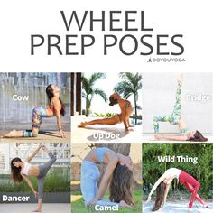 Practice these poses to prepare for full Wheel Photos by awesome DYY ambassador @move_yo_asana