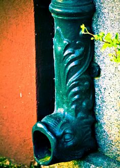 Dolphin Downspouts In Savannah