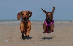 Whooohoooo baaaaaaaaby!! I want to take you to the beach...