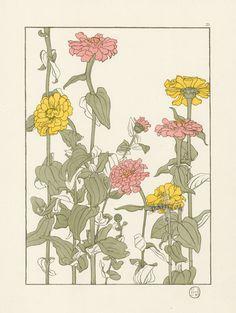 "The Zinnia - Jeannie Foord - ""Decorative Flower Studies"", Pochoir Prints, 1901."