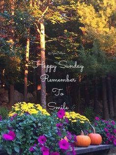 Happy Sunday Pictures, Sunday Morning Wishes, Good Morning Sunday Images, Special Good Morning, Morning Wishes Quotes, Good Morning Images Flowers, Happy Sunday Quotes, Good Saturday, Blessed Sunday