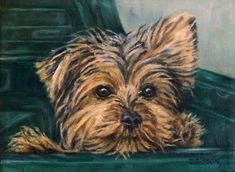 Little Trucker Oil Painting Dog Art Pet Portrait Yorkshire Terrier, painting by artist Debra Sisson