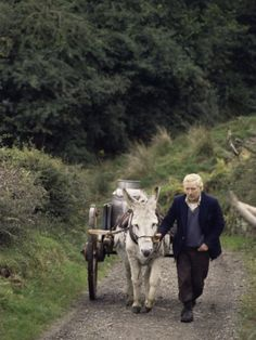Donkey Cart, County Leitrim, Connacht, Republic of Ireland (Eire)   Dad's family is from County Leitrim!