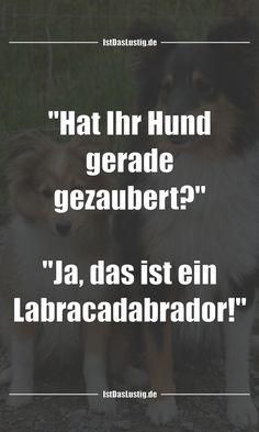 """""""Hat Ihr Hund gerade gezaubert?"""" """"Ja, das ist ein Labracadabrador!"""" ... gefunden auf https://www.istdaslustig.de/spruch/4582 #lustig #sprüche #fun #spass"""
