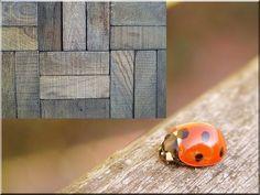 Faburkolat, tölgy falburkoló - Antik bútor, egyedi natúr fa és loft designbútor, kerti fa termékek, akácfa oszlop, akác rönk, deszka, palló Organization, Vintage, Design, Loft, Google, Getting Organized, Organisation, Tejidos, Lofts