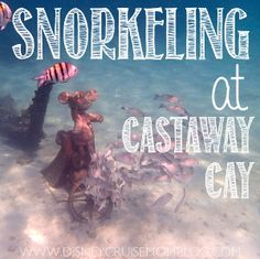 All about snorkeling at Castaway Cay, Disney Cruise Line's private island.