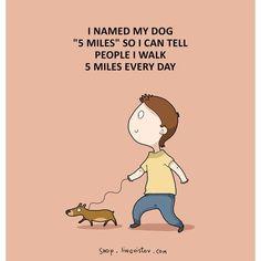 Dog Cute Sweet Fun Funny Joke Jokes English