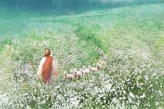 painting of jesus christ leading a flock of sheep through a field of white flowers Jesus Christ Painting, Jesus Art, Lds Art, Bible Art, Jesus E Maria, Pictures Of Jesus Christ, Christian Artwork, Prophetic Art, Biblical Art