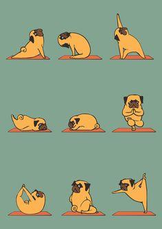Pug Yoga!