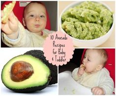 10 Easy Avocado Recipes for when Baby Starts Solids