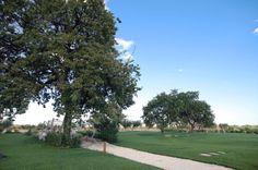 La masseria è circondata da un parco naturale di 2 ettari dove passeggiare con una sensazione di pace e benessere circondati da un paesaggio che ispira, tra campi di grano, antiche querce, grandi ulivi e alberi da frutto dai sapori dimenticati come i corbezzoli.