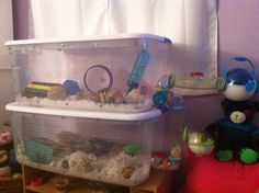 DIY bin cage for a hamster Rat Cage Diy, Pet Rat Cages, Pet Cage, Hamster Bin Cage, Hamster Life, Hamster Habitat, Hamster Supplies, Mouse Cage, Hamsters As Pets